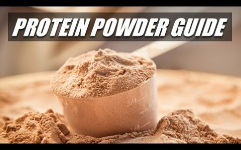 cheap protein powder
